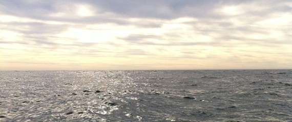 MERCURY OCEAN
