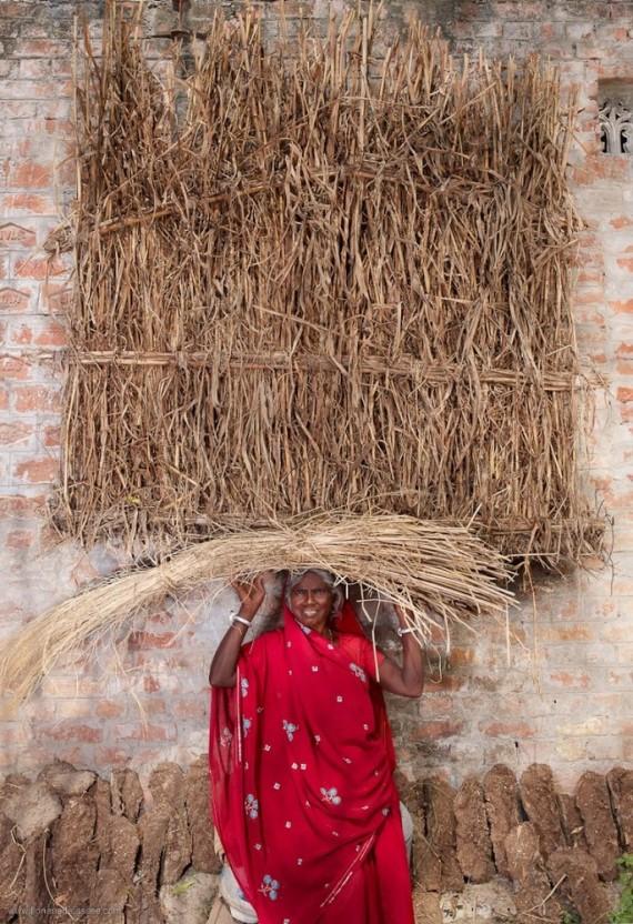 carry photo series hay
