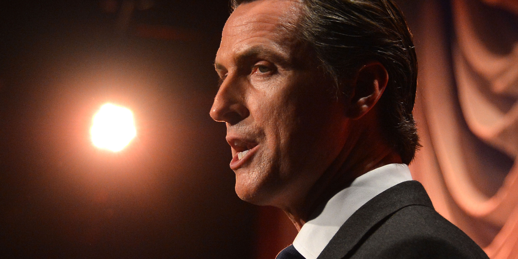 gavin newson essay Pink pistols to gavin newsom: don't take away our gun rights | the fresno who says in an essay that the lgbt feels a need to pink pistols to gavin newsom.