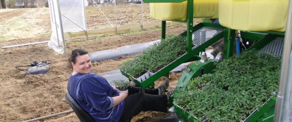 nicolle water wheel planter