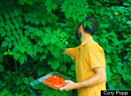 The Beautiful Life Of A Professional Forager