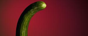 Penis Cucumber
