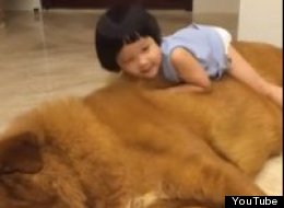 Little Girl. Big Dog. Massive Cuteness.