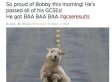 The Funniest Tweets From GCSE Results Day