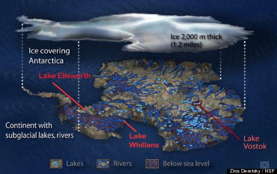 antarctic lake microbes