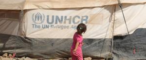 Un Workers Iraq