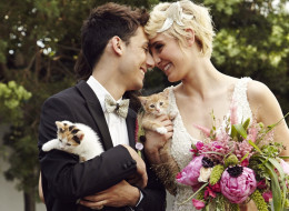 Here's The Cutest, Cuddliest, Kitty-Themed 'Wedding' That You'll Ever See