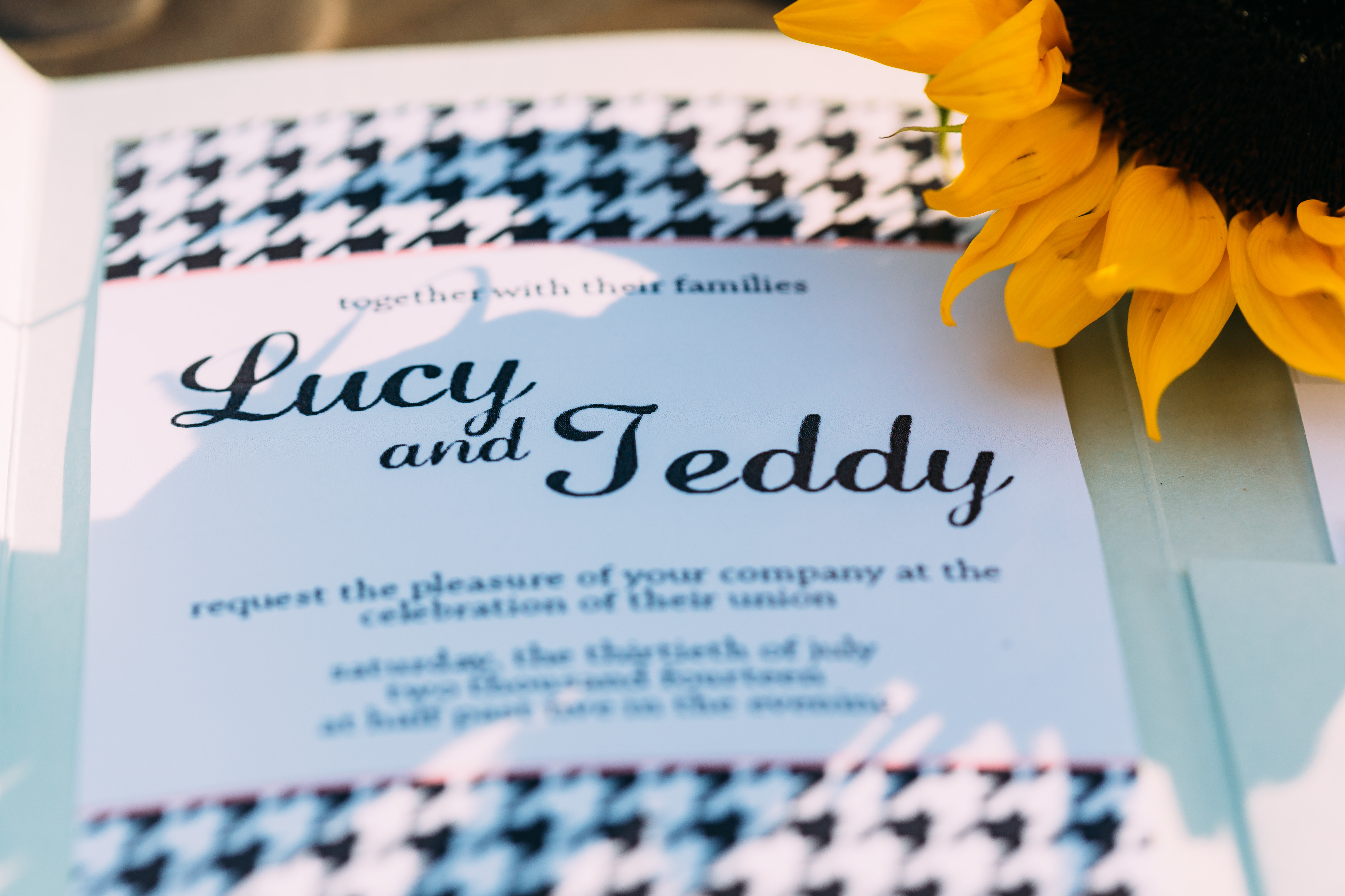 save the date lucy and teddy
