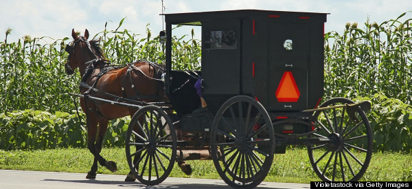 Armed Robber Holds Up Amish Horse And Buggy