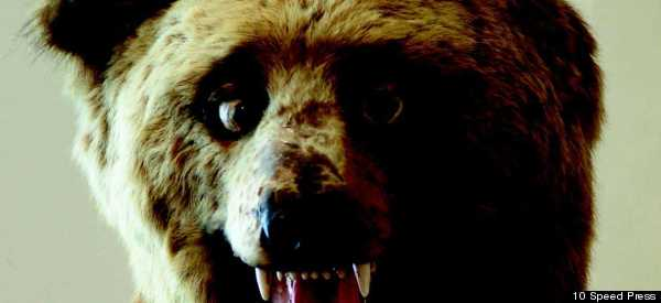 The Worst Examples Of Taxidermy