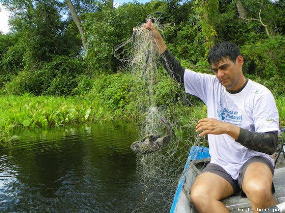 pesca no pantanal