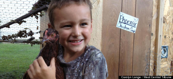 MURDER MOST FOWL! Police Chief Decapitates Boy's Pet Chicken