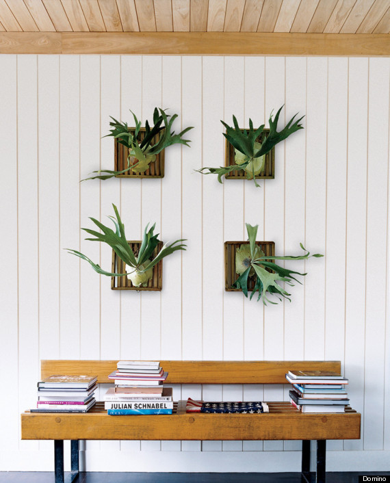 7 creative wall ideas you haven 39 t thought of trying but - Decorate home with plants ...