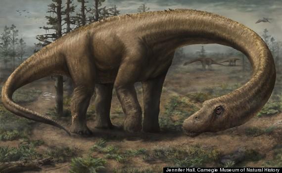 dreadnoughtus illustration