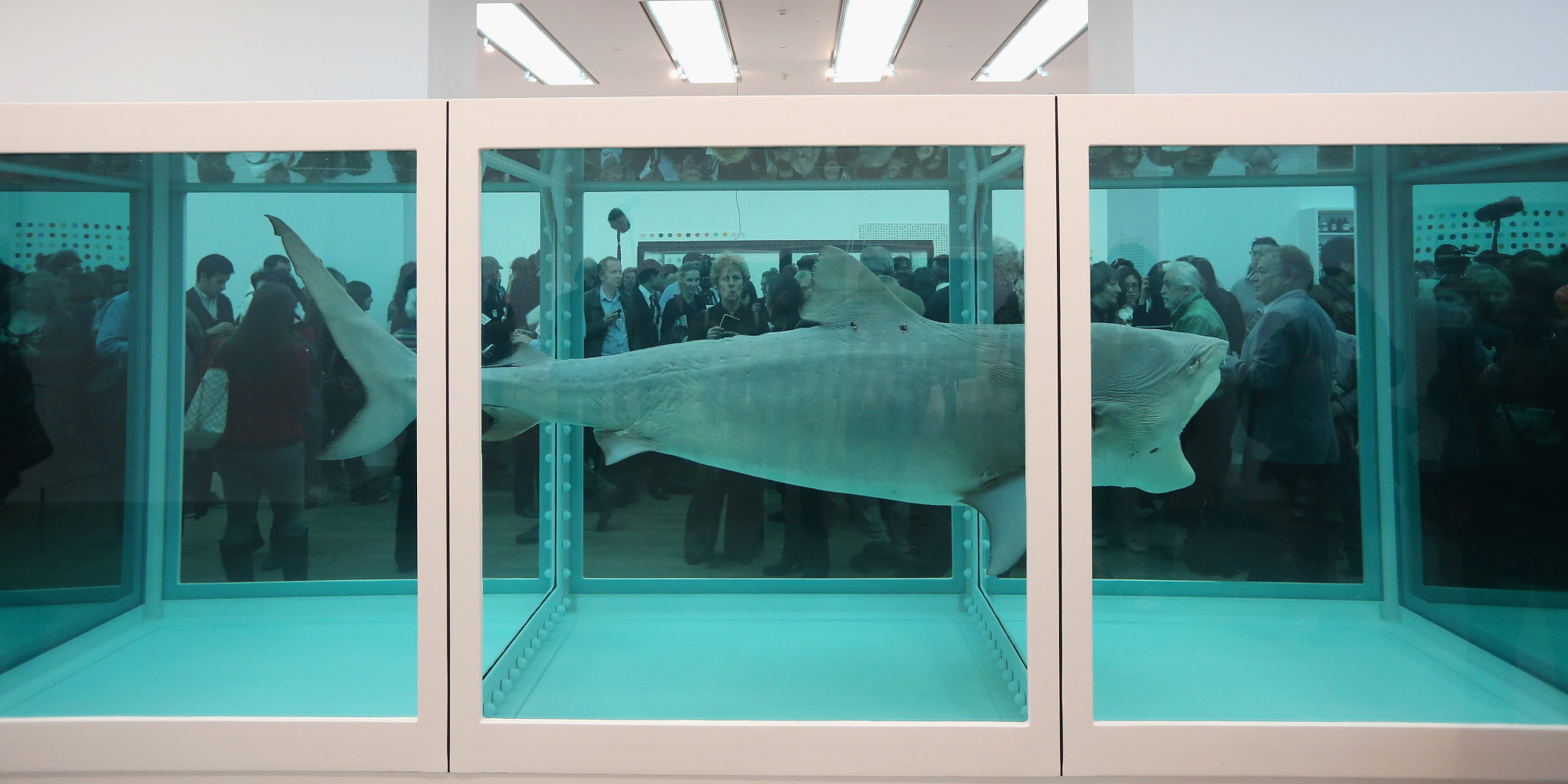 Primal Fear and the Legacy of Damien Hirst | Matthew Israel