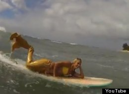 Surfing Mermaids: The Newest Wave? (VIDEO)