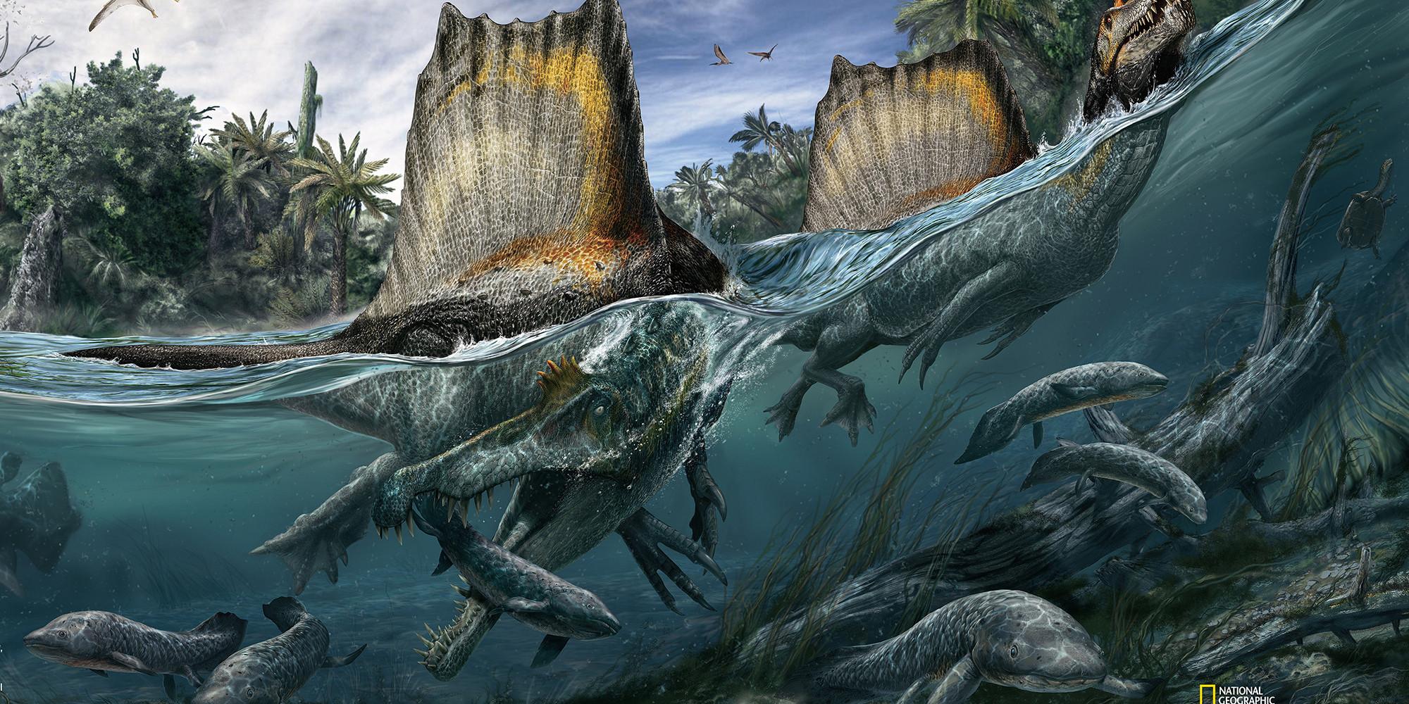 spinosaurus swim
