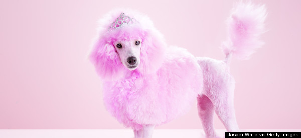 Fun Fundraising Ideas To Host Your Own Pink Party From Breast Cancer Campaign