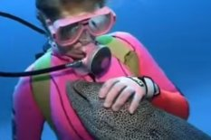 Diver and eel | PIC: YouTube