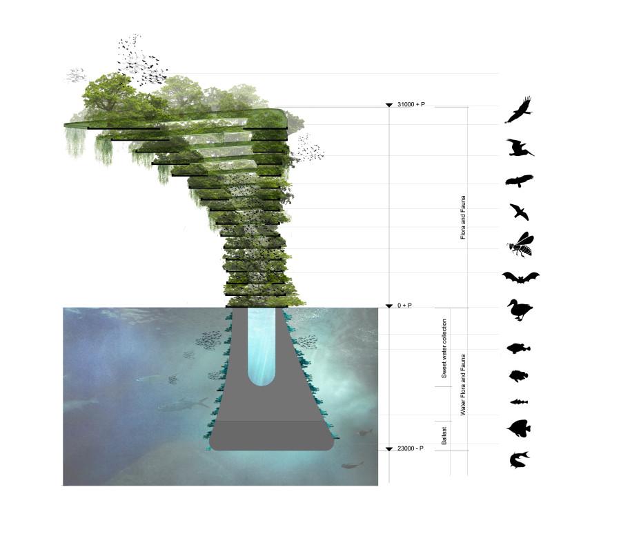 sea tree 5