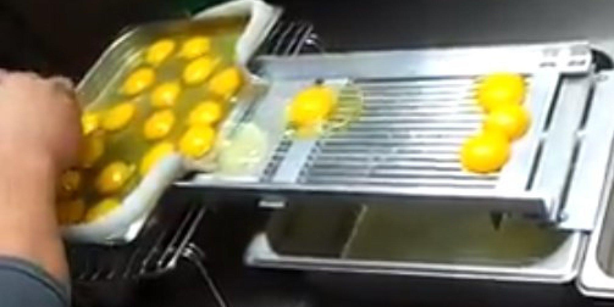yolk separator machine