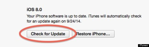 ios8 update check