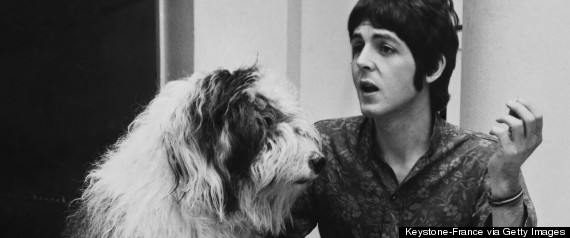 paul mccartney dog martha