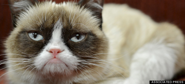 Women Apparently Spend 10 Days Of The Year Grumpy: Is That It?
