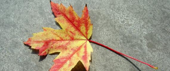 Autumnal Equinox Pagan The Pagan Autumnal Equinox