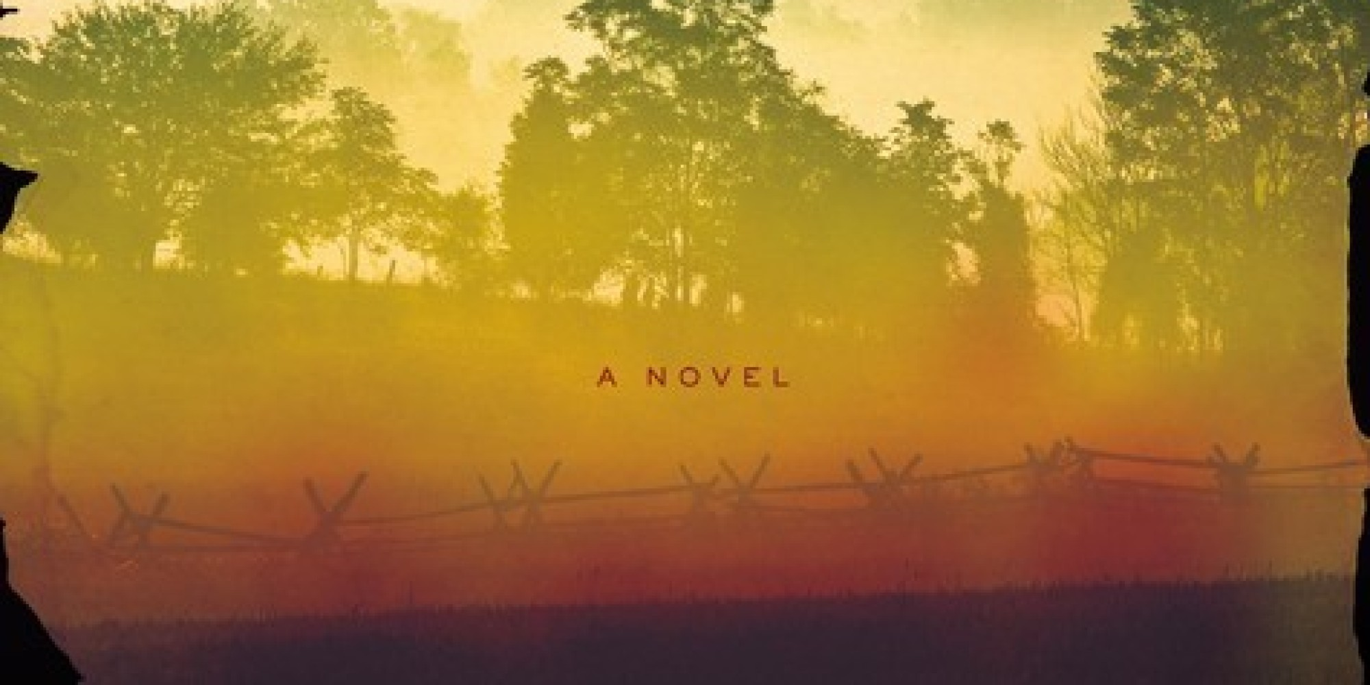 Book Review: Neverhome by Laird Hunt - i've read this