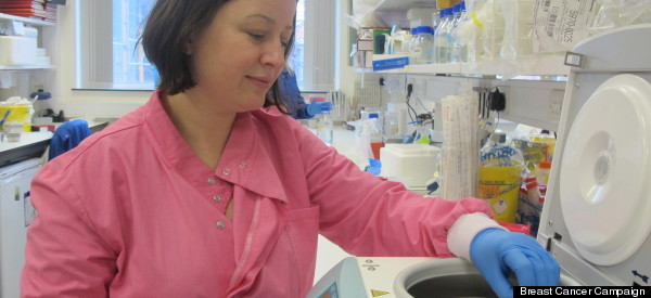 Breast Cancer Awareness: Meet The Scientist Stamping Out BRCA1