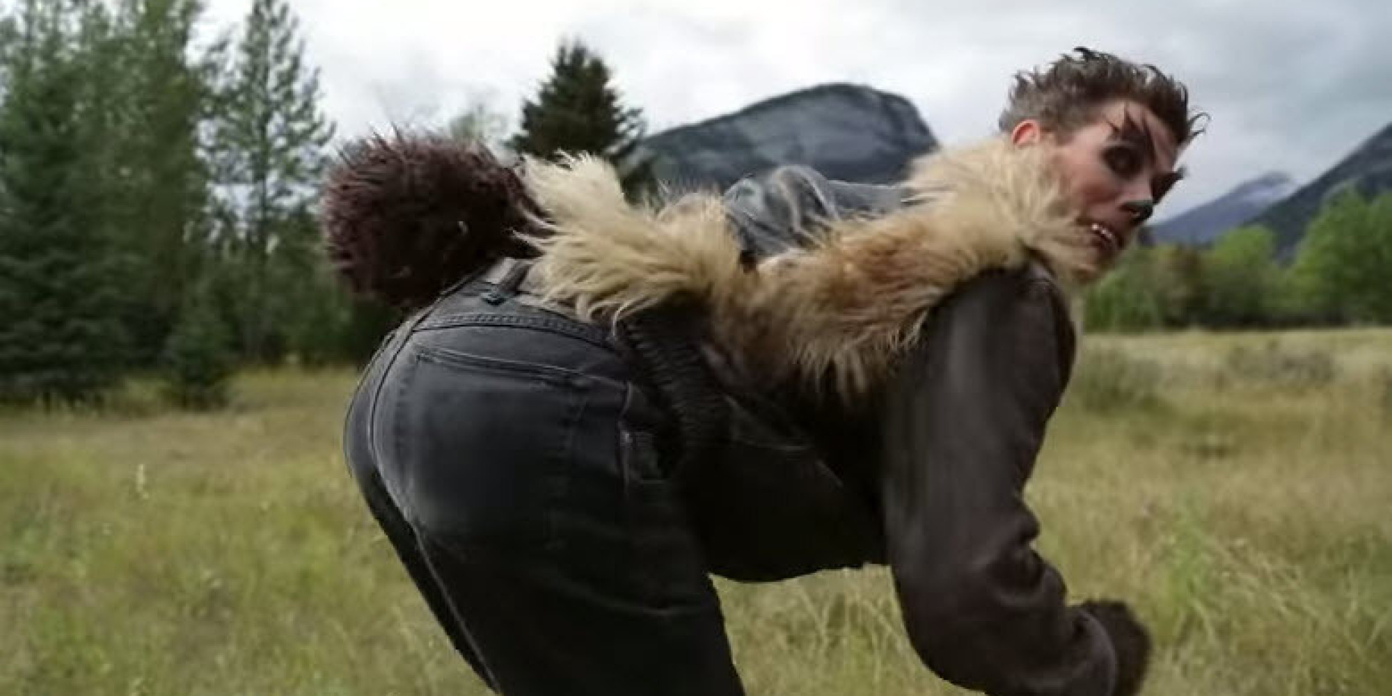 parks canadas wolverine video is something else