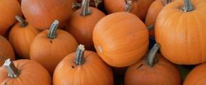 FRESH PUMPKIN RECIPES