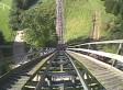 Roller Coaster Decapitates Deer As Passengers Watch In Horror