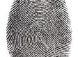 How Fingerprints Became Part of the Modern Criminal Investigation