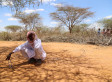 This Is How Kenyan Churches Are Tackling Climate Change