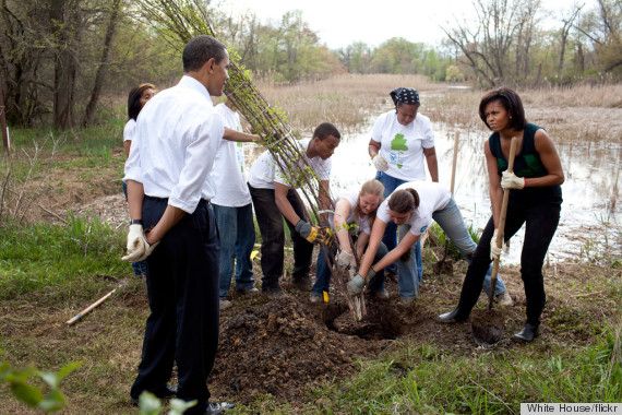 obama volunteer