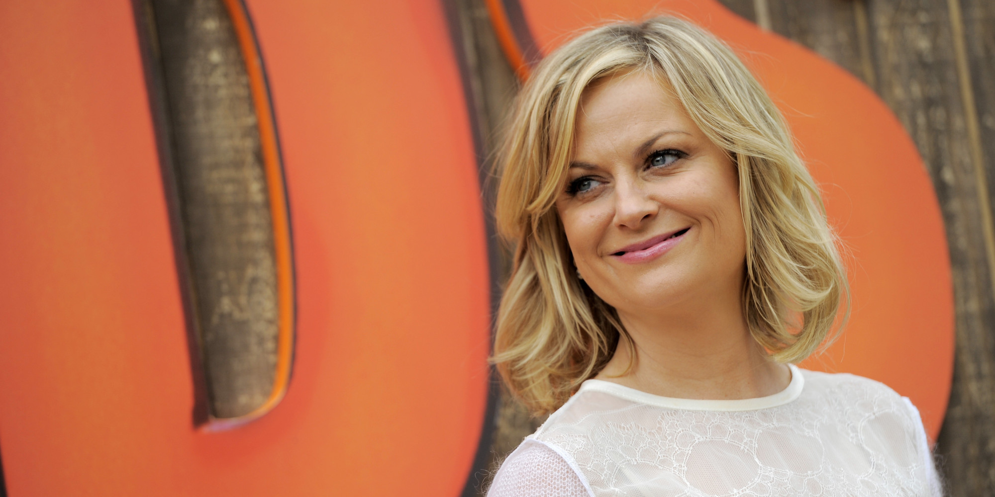 Image result for amy poehler