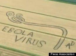 Ebola Virus As Seen As A Crop Circle