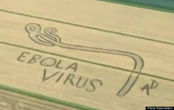 ebola virus crop circle