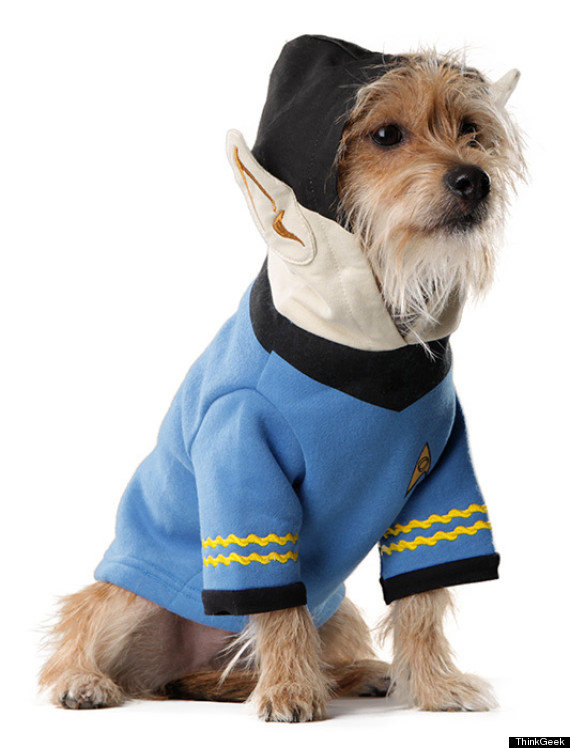 spock dog