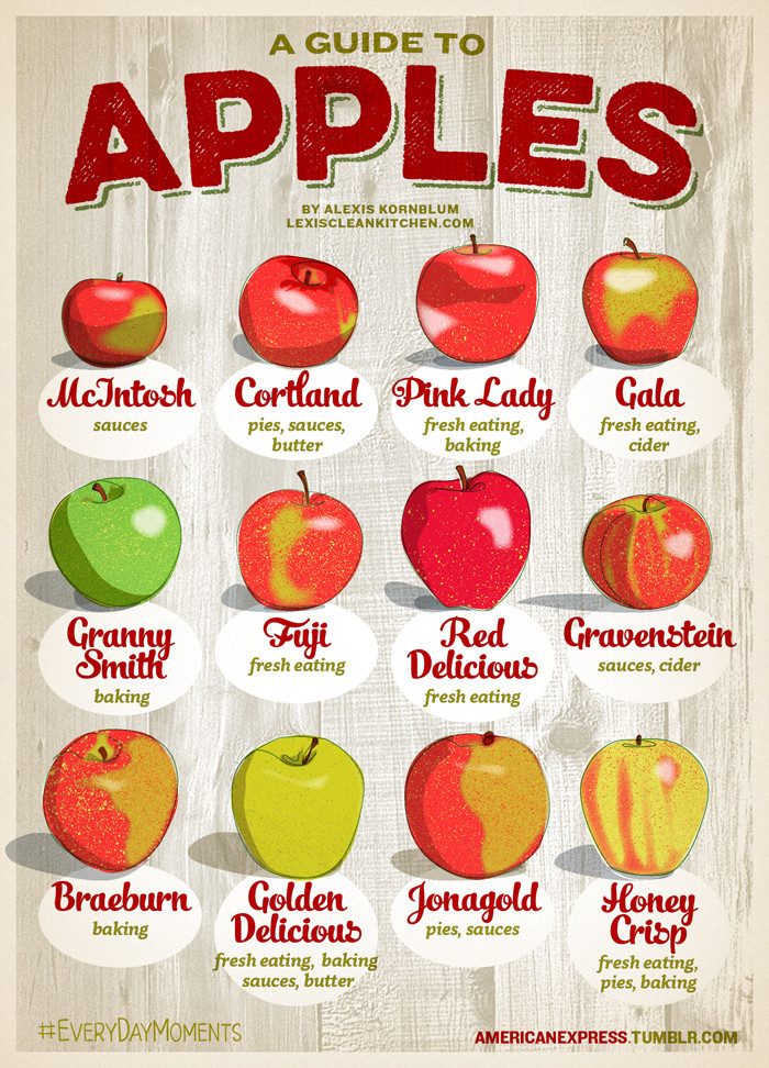 A guide to choosing the best apple for pies cider and for Fall cooking tips