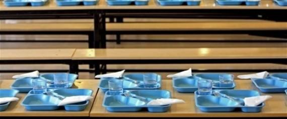 Encuentran restos de cucarachas y larvas en comedores escolares en madrid y castilla y le n - Comedores escolares castilla y leon ...