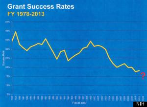 nih grant success rates