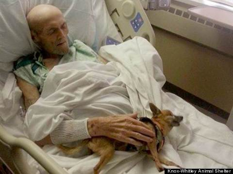 sick man reunited with dog