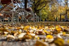 Herbstliches München | Bild: PA