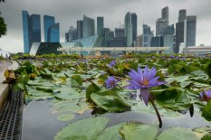 Singapour | Image: PA