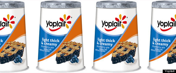 yoplait blueberry