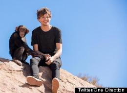 1D Slammed After Filming Video With Chained Chimp