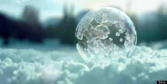 bubbles 4k